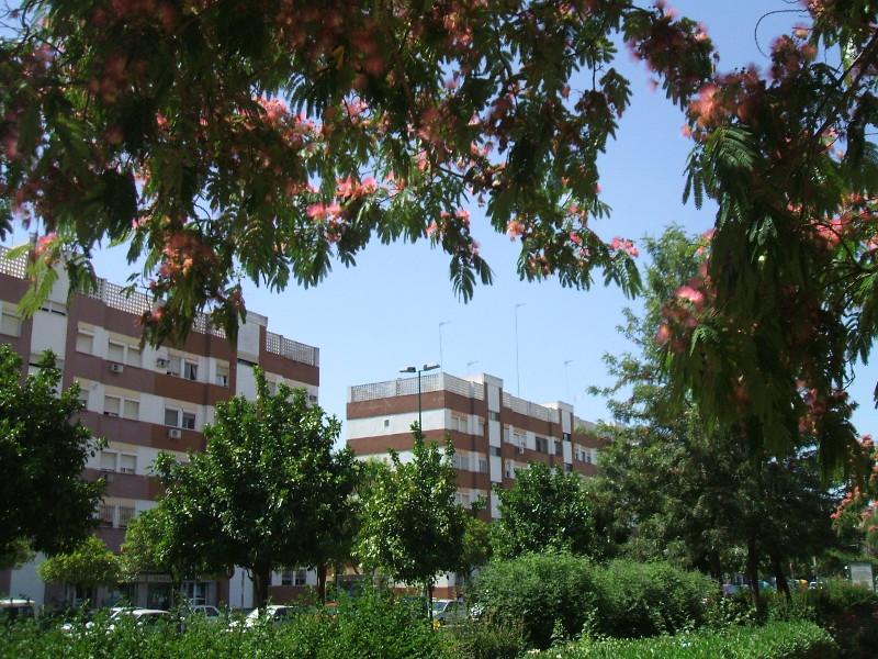 Asociación Jardines de la Oliva
