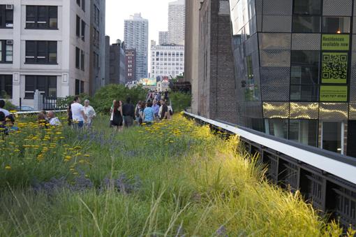 vegetación en Highline