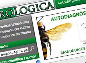 Agrológica, una web para el autodiagnóstico de las plagas