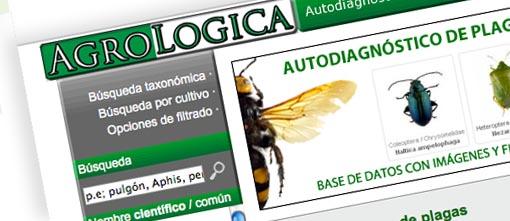agrologica.es