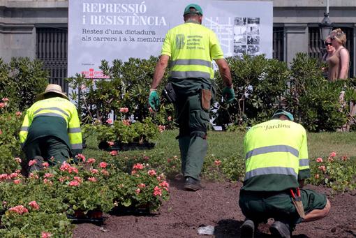 Taller de direcci n de obra en paisajismo y jardiner a for Empresas de jardineria