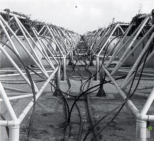 Sistema de riego en la zona de acopio de las pérgolas