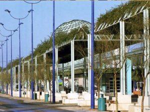 20 años del paisajismo de EXPO 92 (VI): <br>Detalles del Proyecto Pérgolas: control fitosanitario