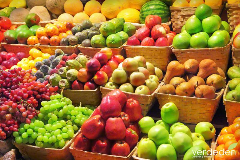 agricultura ecológica
