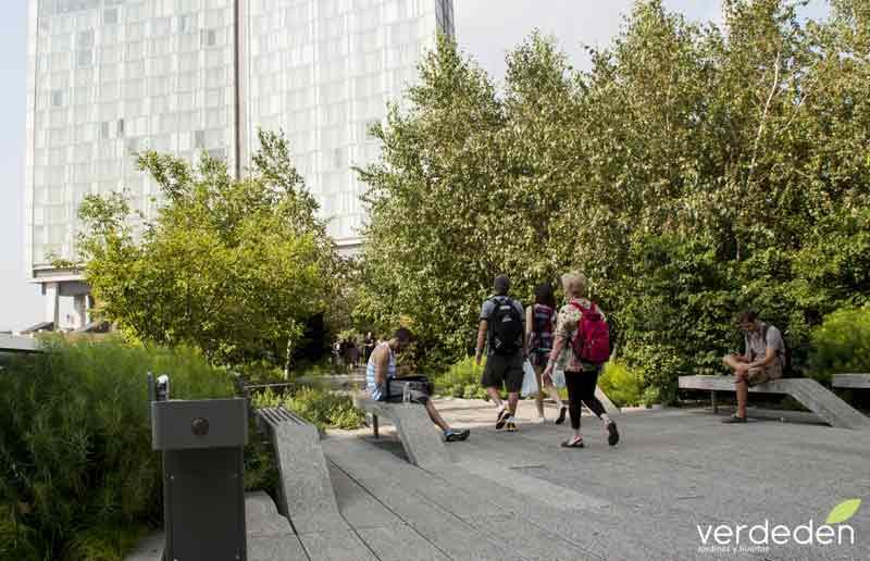 Highline zona árboles