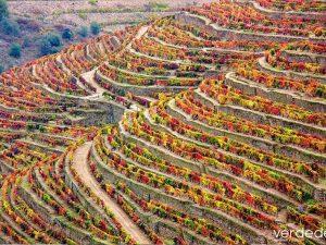 importancia del paisaje en el medio ambiente