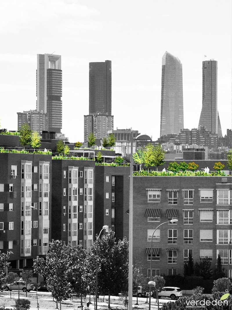 Proyecto jardines en balcones y terrazas de madrid for Jardines en terrazas y balcones