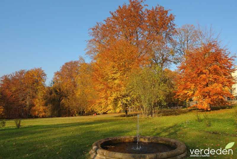 Tilos en otoño