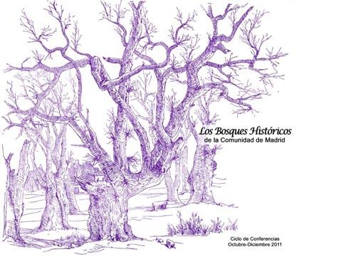 Bosques historicos