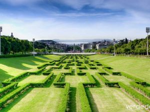 ¿Qué es el paisajismo? las funciones de los paisajistas